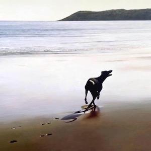 2003 Taking the beach